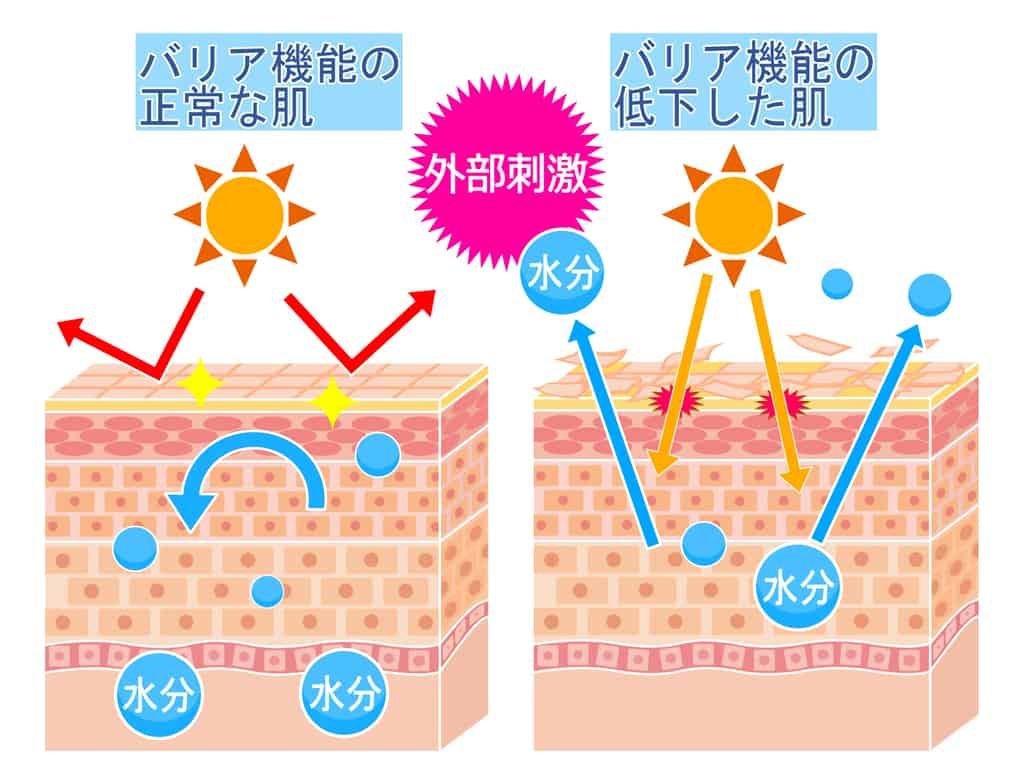 朝シャンは紫外線の影響をうけやすくする