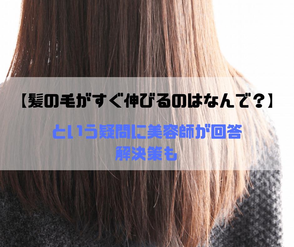 【髪の毛がすぐ伸びるのはなんで?】という疑問を美容師が解決【悩み】