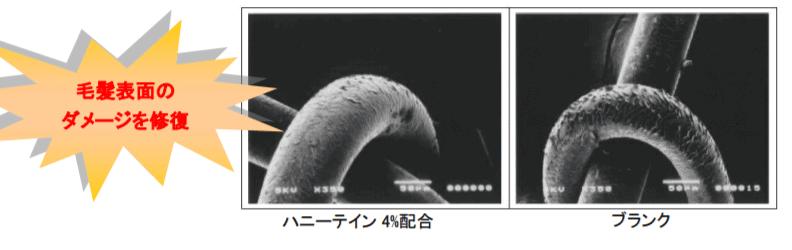 画像に alt 属性が指定されていません。ファイル名: hematin-1.png